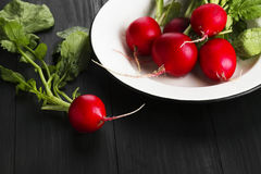 Fresh radish in a white plate on a dark wooden background. Fresh radish in a white plate on a dark wooden background Royalty Free Stock Image