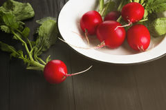 Fresh radish in a white plate on a dark wooden background. Tonin. G Royalty Free Stock Image