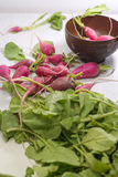 Fresh radish. On white wooden table Stock Image