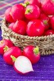 Radish in wicker basket. Fresh radish in wicker basket Stock Photo