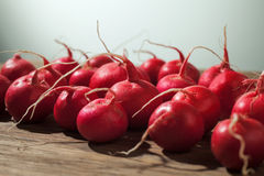 Fresh Radish on wood table. Deep focus Stock Photography