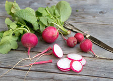 Fresh radish. On wooden background Stock Images