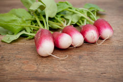 Fresh radish. On wooden background Stock Photography