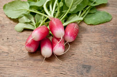 Fresh radish. On wooden background Royalty Free Stock Photo