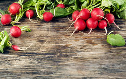 Fresh radish on wooden background. With copy space Stock Photography