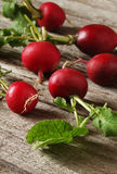 Fresh radish on wooden background. With greens Royalty Free Stock Photos