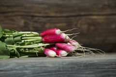 Fresh radish on a wooden background. Sheaf of fresh radish on a wooden boards, closeup Royalty Free Stock Photo