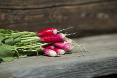 Fresh radish on a wooden background. Sheaf of fresh radish on a wooden boards, closeup Stock Image