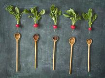Fresh radish and wooden spoons Royalty Free Stock Photos