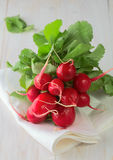 Fresh radish. On wooden table Stock Image