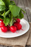 Fresh radish on a wooden table. Bunch of fresh organic radish on a rustic wooden background, selective focus Royalty Free Stock Images