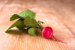 Fresh radish on a wooden table. Fresh red radish on a wooden table Stock Images