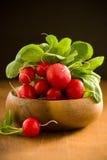 Fresh radishes Royalty Free Stock Images