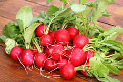 Fresh radishes. Royalty Free Stock Images