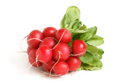 Fresh radishes. On a white background Royalty Free Stock Photography