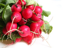Free Fresh Radishes Stock Photography - 1874182