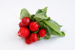Fresh radishes. A very tasty radish aspect-useful natural texture royalty free stock image
