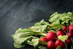 Fresh radishes background. Fresh radishes, food cooking background Royalty Free Stock Photos