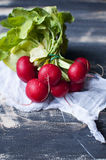 Fresh radishes on black wooden table. With white cloth Royalty Free Stock Photo