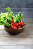 Fresh radishes in a bowl. Food Royalty Free Stock Photo
