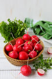 Fresh radishes in a bowl Stock Photography