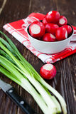 Fresh radishes in a bowl and green onions. Closeup Royalty Free Stock Photography