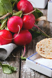 Fresh radishes with bread. Fresh wet radishes with sea salt and bread over old wooden table Stock Photography