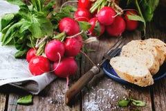 Fresh radishes with bread Stock Photos