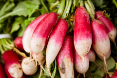 Fresh radishes. A bunch of freshly picked multi colored radishes at the local farmer's market Stock Image