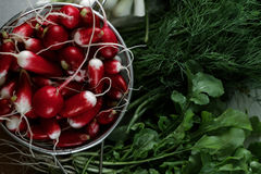 Fresh radishes in a colander and greens on a table. Bunches of fresh salad, dill, onion and radish Royalty Free Stock Photos