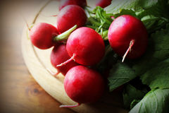 Fresh radishes on cutting board Royalty Free Stock Photography