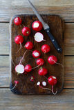 Fresh radishes on a cutting board. And knife Royalty Free Stock Photography