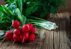 Fresh radishes, fresh green onion and different fresh herbs on. Organic fresh radishes, bunch of fresh green onion and different fresh herbs on rural wooden Royalty Free Stock Image