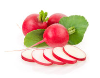 Fresh Radishes with Green Leaves. Fresh Red Radishes Isolated on White Background Stock Photo