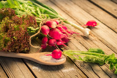 Fresh radishes with green onions and salt on a wooden table Stock Images