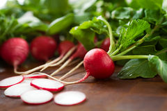 Fresh radishes with greet tops. Radishes, whole and sliced, on a brown butcher block surface Royalty Free Stock Photos