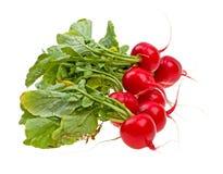Fresh radishes isolated on white Royalty Free Stock Image