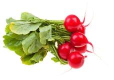 Fresh radishes isolated on white. Background Stock Photo