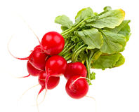 Fresh radishes isolated on white Royalty Free Stock Photos