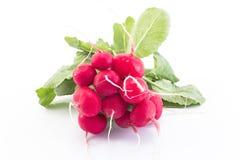 Fresh radishes isolated on white Stock Images
