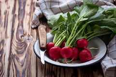 Fresh radishes and knife. Selective focus Royalty Free Stock Images