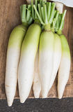 Fresh Radishes. In market cameron highlands Stock Images