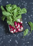 Fresh radishes in a metal bowl. On a dark background Stock Image