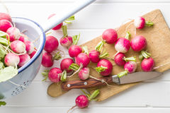 Fresh radishes on old cutting board. Fresh radishes on old cutting board with knife. Healthy vegetable red radishes Royalty Free Stock Images