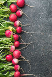 Fresh radishes on old kitchen table. Royalty Free Stock Photography