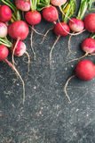 Fresh radishes on old kitchen table. Healthy vegetable. Top view Stock Image