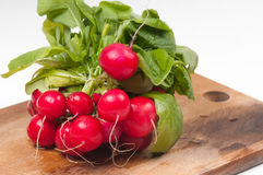 Fresh radishes on old wooden board. Fresh radishes from ground on old wooden board Stock Photo
