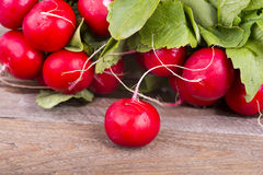 Fresh radishes on old wooden boards Royalty Free Stock Image