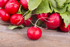 Fresh radishes on old wooden boards Stock Images