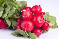 Fresh radishes on old wooden boards Stock Photo
